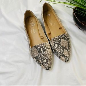 Coconuts by Matisse  snakeskin pointed toe flats